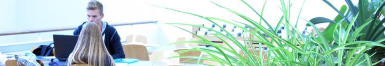 Recursos nacionals i internacionals per a l'avaluació