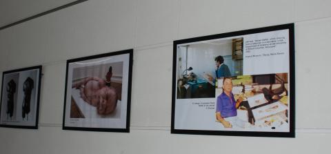 Fotografia d'un detall de pósters dedicats a l'anatomia artística