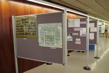 Visió general de l'exposició