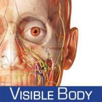 Visible Body (Ovid). Recurs en període de prova