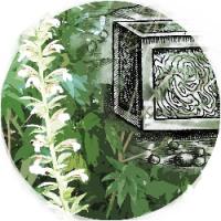 Paradisini: marques tipogràfiques al jardí. Exposició al CRAI Biblioteca de Reserva