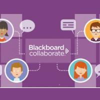BB Collaborate, nova eina de videoconferències integrada al Campus Virtual UB