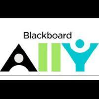 Nova funcionalitat al Campus Virtual de la UB: BB Ally