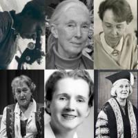 Exposició virtual al CRAI Biblioteca de Biologia amb motiu del Dia Internacional de les Dones