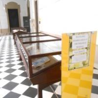 Exposició dels donatius rebuts al CRAI Biblioteca de Medicina durant el curs 2014-15