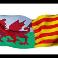 Forum de l'Associació Gal·les-Catalunya i el CRAI Biblioteca del Pavelló de la República