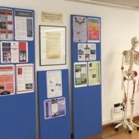 Exposició de Treballs de l'alumnat al nou espai expositiu del CRAI Biblioteca del Campus Clínic
