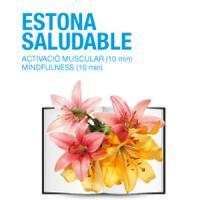 Èxit de participació en l'Estona saludable