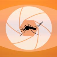 CRAI Biblioteca del Campus Clínic, exposicions, La malària en el punt de mira Recorregut històric de la lluita contra la malaltia