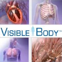 Visible Body Physiology Animations. Nou recurs