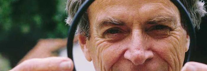 Feynman junta tòrica