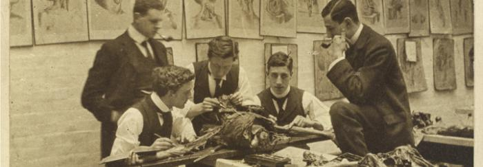 Imatge disponible a Wellcome Images. The interior of a disecting room: five students and/or teachers dissect a cadaver.